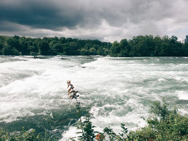 梦见河水是奶白色